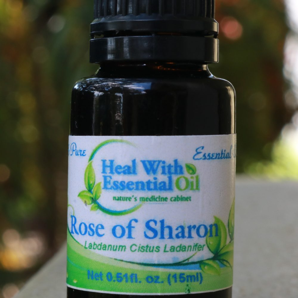 Rose of Sharon (labdanum) Therapeutic Grade Essential Oil - Cistus Ladanifer Essential Oil