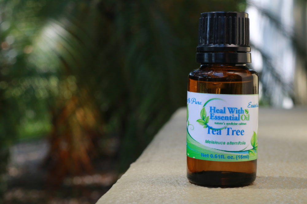Tea Tree (Melaleuca) Therapeutic Grade Essential Oil - Melaleuca alternifolia - 15ml